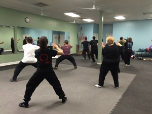 Adult Tai Chi Kungfu Martial Arts at Oriental Phoenix Arts in Cypress, TX