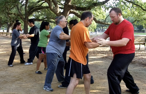 Tai Chi Kung Fu Martial Arts Push Hands