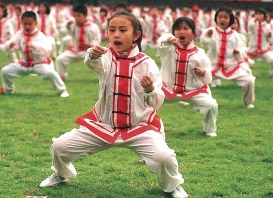 Cy-Fair Kids Kung Fu Summer Camp